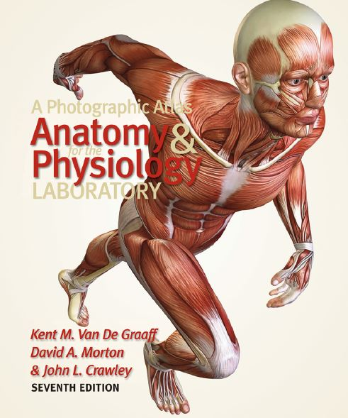 https://pickpdfs.com/a-photographic-atlas-for-the-anatomy-and-physiology-laboratory-7th-edition-pdf-download/