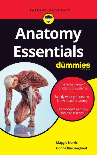 https://pickpdfs.com/anatomy-essentials-for-dummies-2019-pdf/