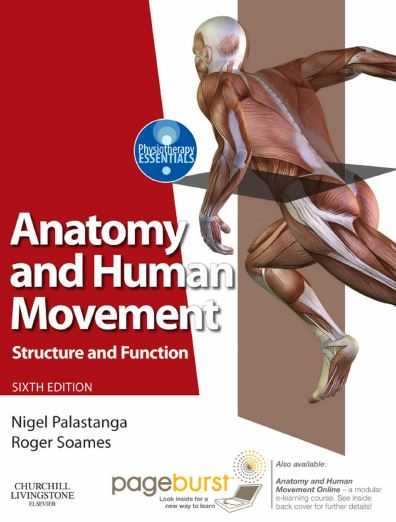 https://pickpdfs.com/anatomy-and-human-movement-6th-edition-pdf-download/