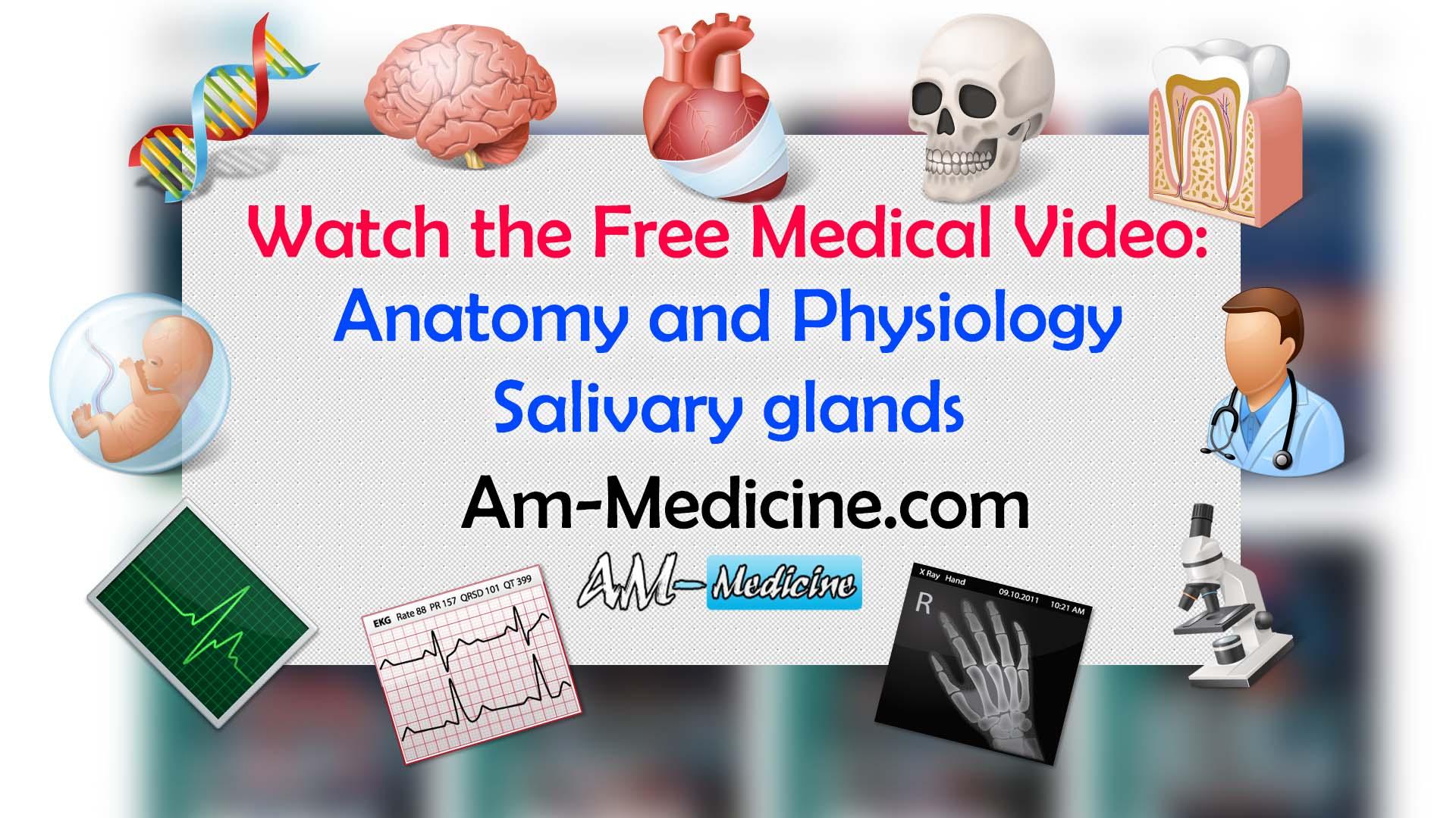 https://pickpdfs.com/anatomy-and-physiology-salivary-glands-video/