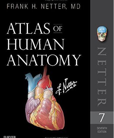 https://pickpdfs.com/atlas-of-human-anatomy-7th-edition-pdf-free-pdf-epub-medical-books/