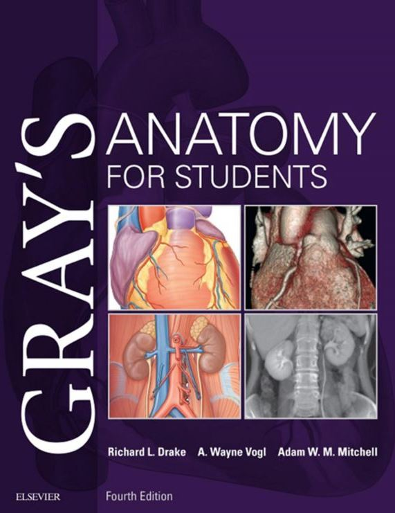 https://pickpdfs.com/grays-anatomy-for-students-4th-edition-pdf/