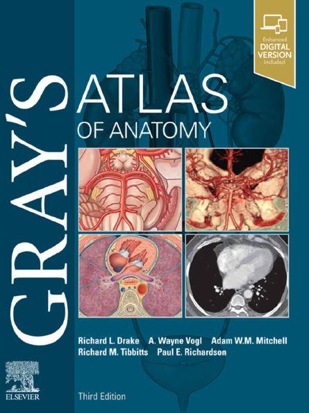 https://pickpdfs.com/grays-atlas-of-anatomy-3rd-edition/