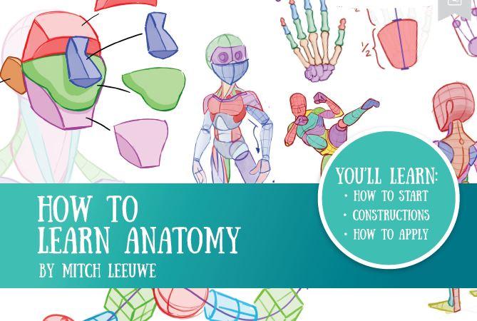 https://pickpdfs.com/how-to-learn-anatomy-pdf/