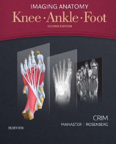 https://pickpdfs.com/knee-ankle-foot-2nd-edition-pdf/