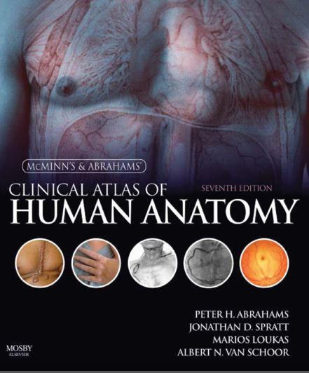 https://pickpdfs.com/download-weedons-skin-pathology-5th-edition-pdf-free/