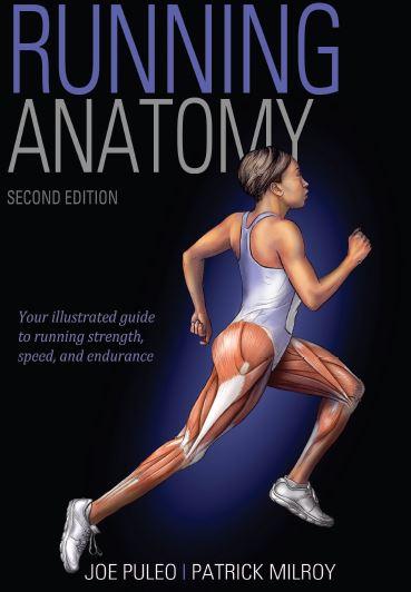 https://pickpdfs.com/running-anatomy-2nd-edition-pdf/