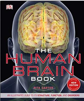 https://pickpdfs.com/neurosurgery-fundamentals-pdf-free-download2021/