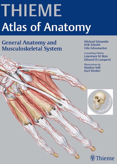 https://pickpdfs.com/thieme-atlas-of-anatomy-general-anatomy-and-musculoskeletal-system-pdf/