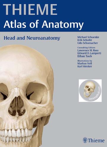 https://pickpdfs.com/download-brs-neuroanatomy-6th-edition-pdf-free/