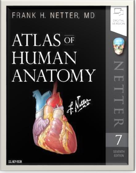 https://pickpdfs.com/download-frank-netters-atlas-of-human-anatomy-pdf-7th-edition/