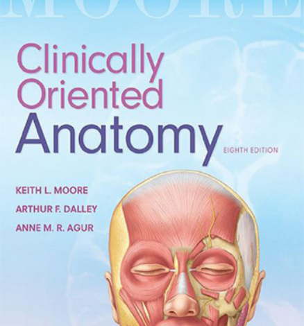https://pickpdfs.com/download-moore-clinically-oriented-anatomy-8th-edition-free/