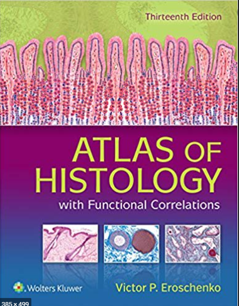 https://pickpdfs.com/download-di-fiore-atlas-of-histology-with-functional-correlations-pdf/